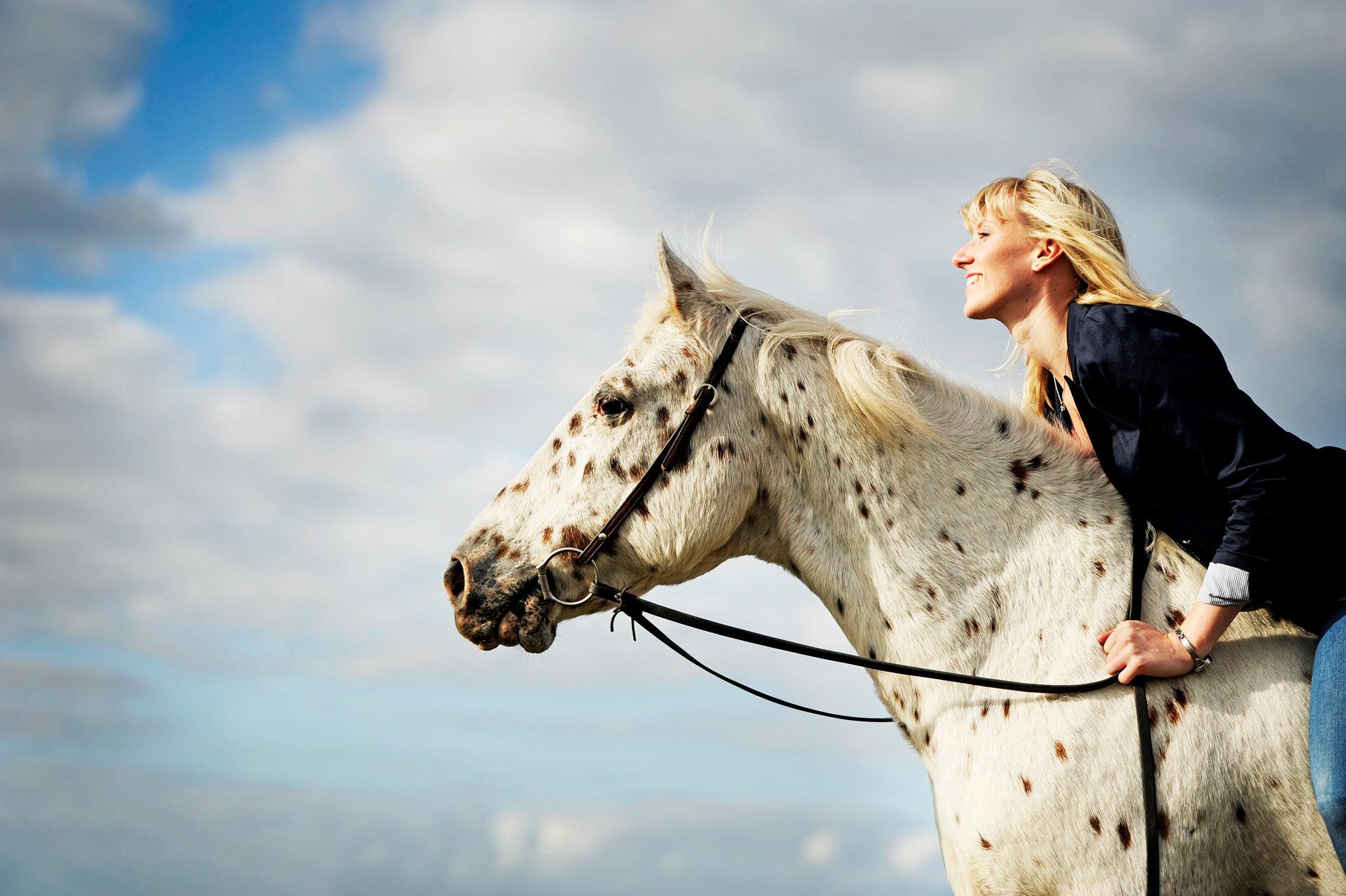 Pferdefotografie Siegerland